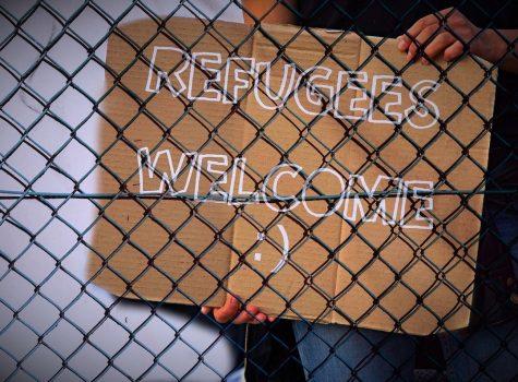 Refugee Resources
